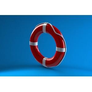 1/350 Life buoy